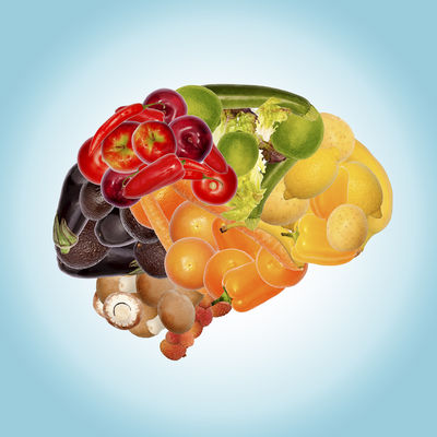 The food and brain connection