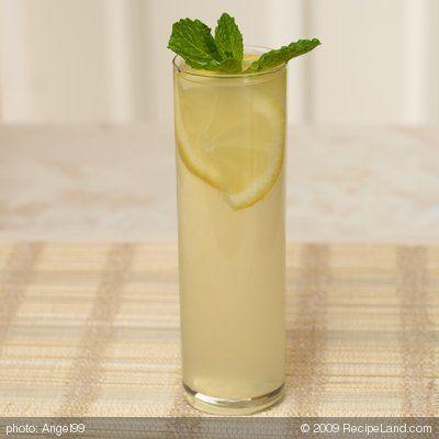 Mint Iced Green Tea