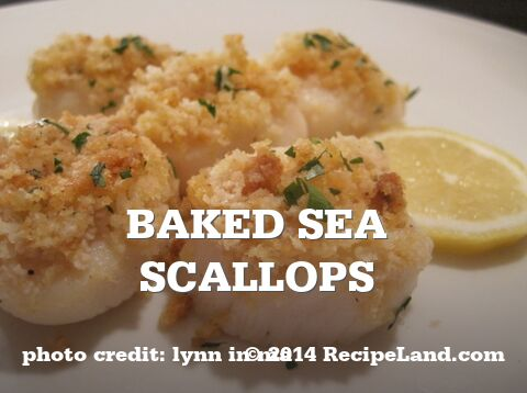 Baked Sea Scallops