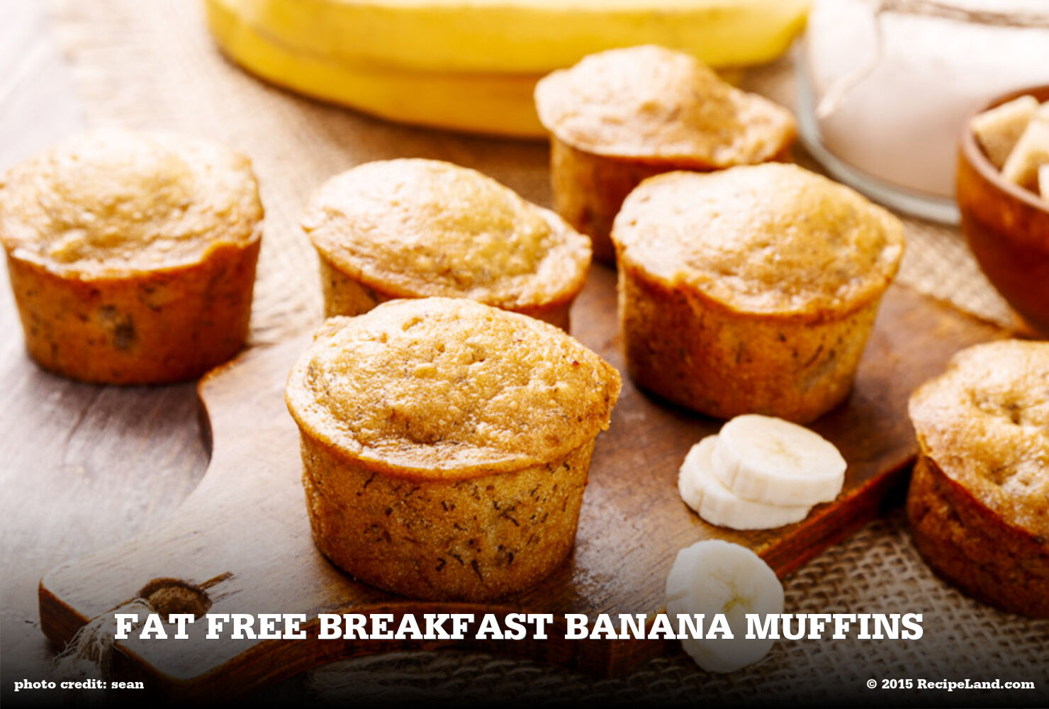 Fat Free Breakfast Banana Muffins