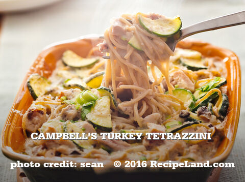 Campbell's Turkey Tetrazzini