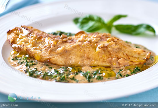 Snapper with Basil Cream Sauce