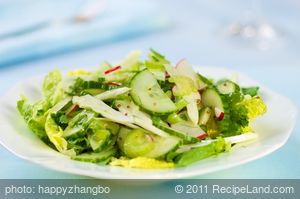 Celery, Cucumber, Fennel and Radish Salad with Vinaigrette