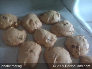Low Fat Pumpkin Cookies