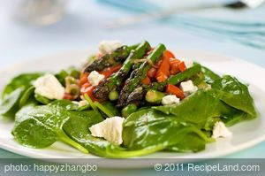 Seared Asparagus, Roasted Bell Pepper and Spinach Salad with Goat Cheese