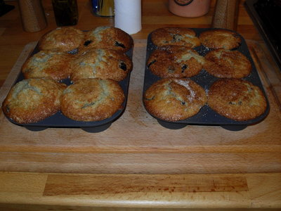 Blueberry Cupcakes or Muffins