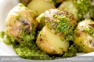 Grilled Potato and Parsley Pesto Salad